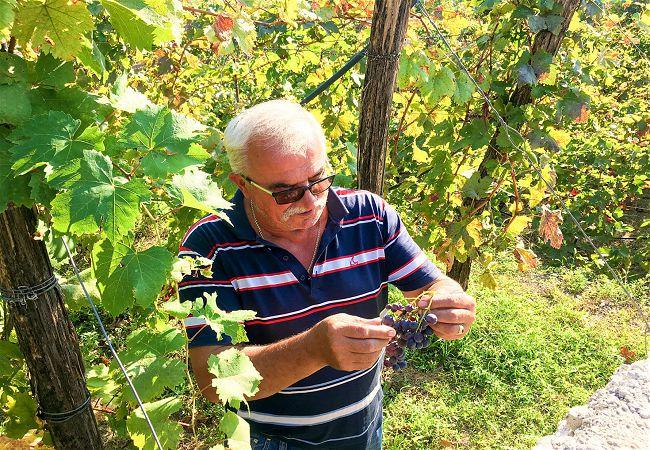 Klicic-Winery-Iliya-Klicic-Montenegro-a36583285248.jpg
